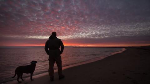 Robert e Bella: l' incredibile viaggio di un uomo e il suo cane