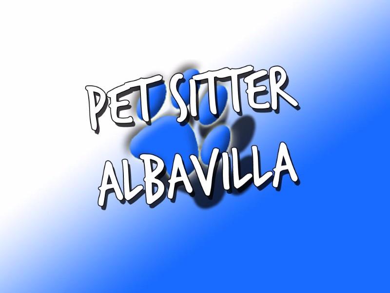 pet-sitter-albavilla-como-pensione-taxi-educazione-cinofila.cani-gatti-1