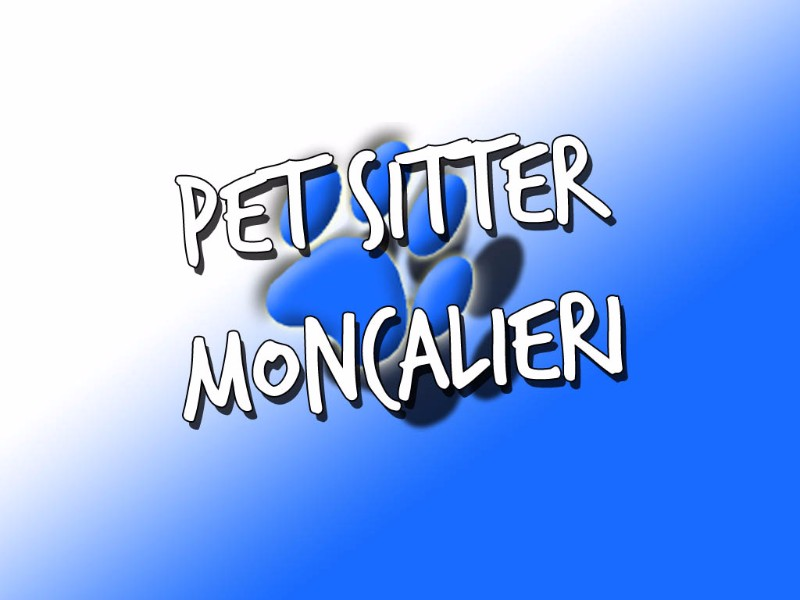 pet-sitter-moncalieri-referenziata-pluri-dog-walker