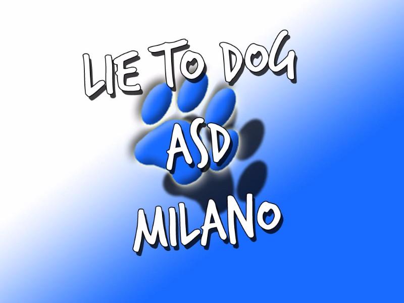 lie-to-dog-associazione-sportiva-dilettantistica-educatore-cinofilo-milano