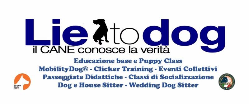 lie-to-dog-milano-educatore-dog-sitter-wedding