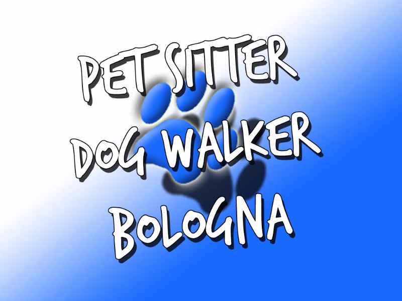 pet-dog-cat-sitter-walker-bologna-caterina-noto