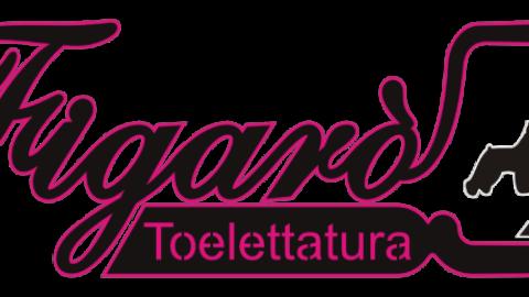 TOELETTATURA FIGARO'