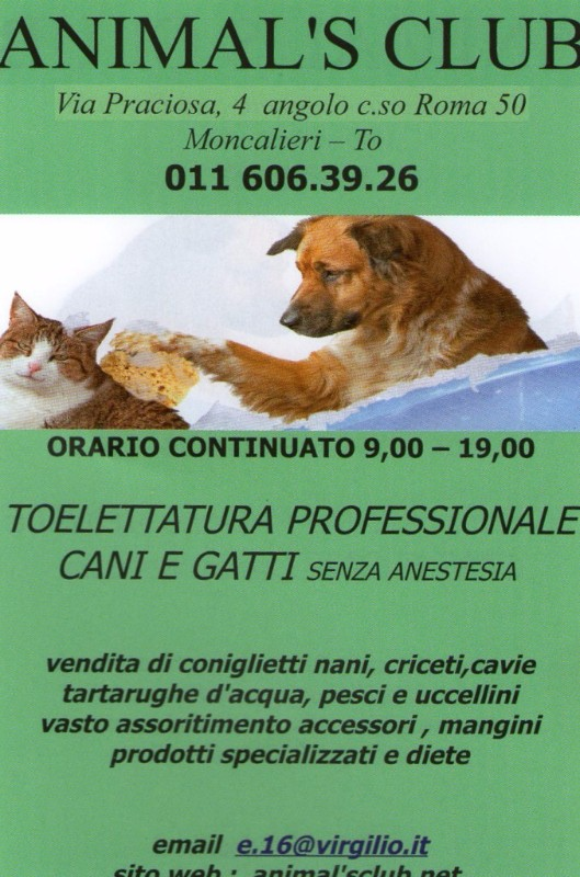 moncalieri-animal-bau-club-torino