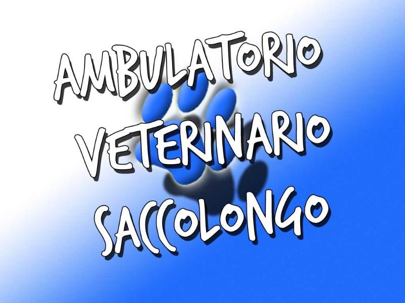 ambulatorio-veterinario-saccolongo-padova-veneto-dottor-dr-alessio-leo