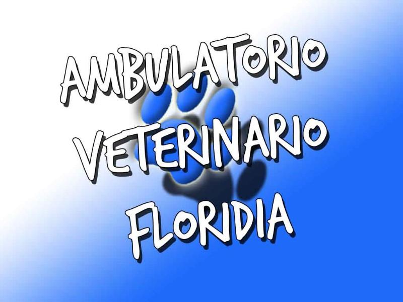 ambulatorio-veterinario-floridia-santi-garofalo