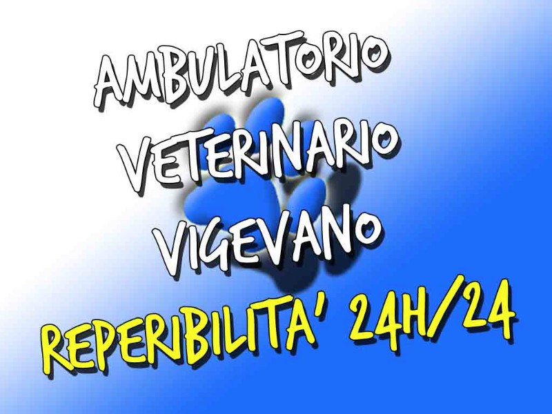 veterinario-ambulatorio-vigevano-pavia-24-h-ore