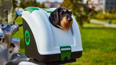 EICMA 2016: alla scoperta di POW – Pet On Wheels il tuo cane sulle due ruote