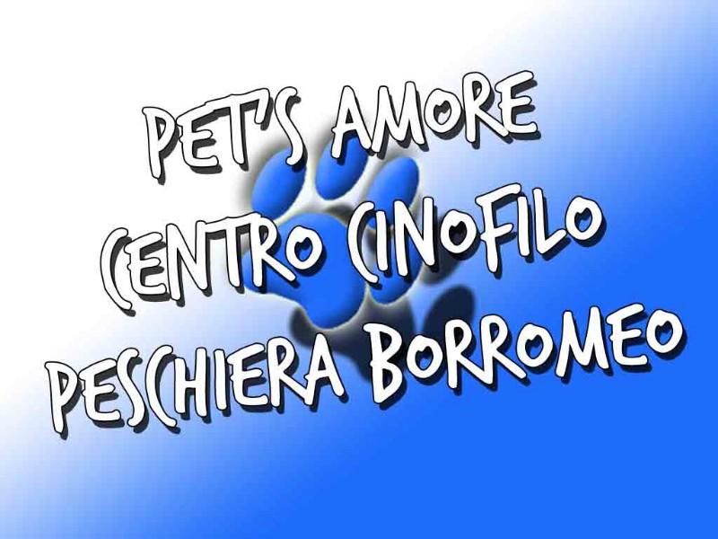 pets-amore-centro-associazione-cinofilo-peschiera-borromeo-bellaria