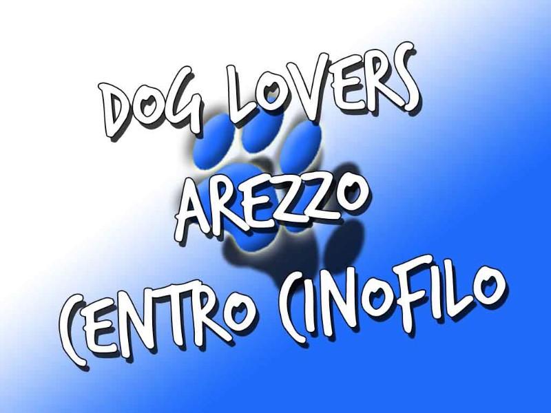dog-lovers-centro-cinofilo-arezzo-toscana-agility-dog