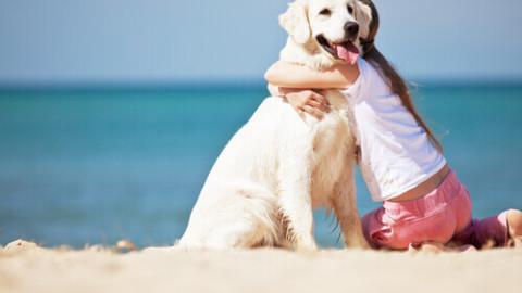 Il tuo cane, l'amico che ti mantiene giovane e sano