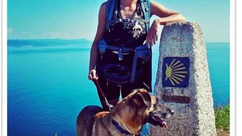 Il Cammino di Capo Finisterre: 80 km a quattro zampe fino alla fine della terra
