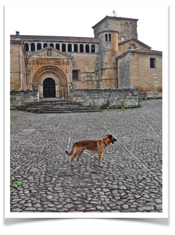 Clyde in viaggio verso Santiago di Compostela