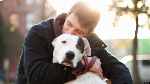 Adottare un cane allunga la vita di 4 volte a chi soffre di cuore
