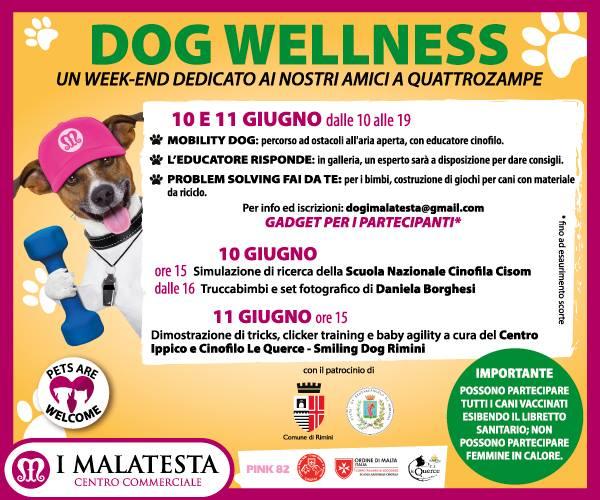 Dog Wellness a Rimini il 10 e 11 giugno una due giorni a sei zampe!