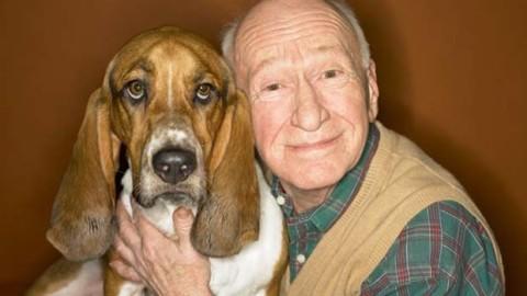 A Milano gli anziani diventano dog sitter