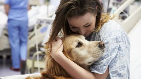 L'Ospedale di Asti consente l'accesso a cani e gatti