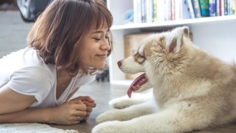 a Ravenna il corso formativo per una migliore convivenza con il proprio cane