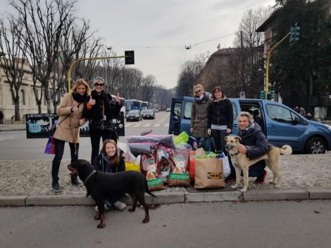 Cangattile Tom & Jerry e Area Cani Milano: un furgoncino non basta!