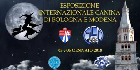 Esposizione Internazionale Canina a Modena il 5 e 6 gennaio
