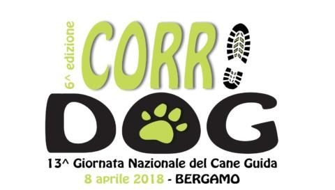 """Giornata Nazionale del Cane Guida: a Bergamo si terrà la """"Corri Dog"""""""