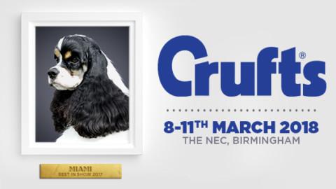 Le foto più belle del Crufts Dog Show 2018