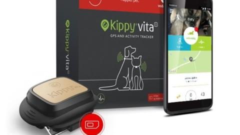 Vodafone Dog Academy: partecipa anche tu al concorso fotografico a premi!