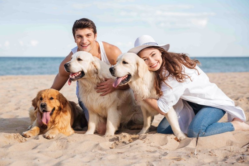 vacanze-cane-auto-hotel-dog-friendly
