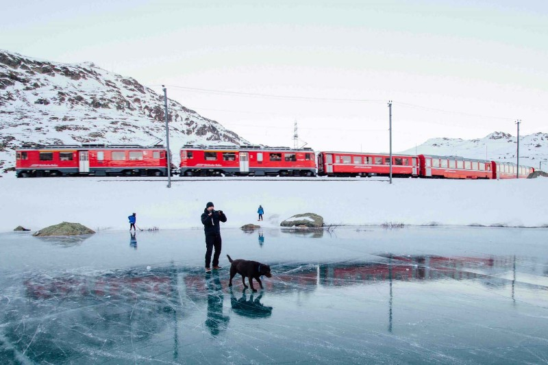 viaggiare-cane-treno-info