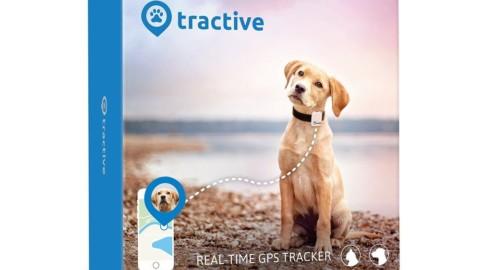 Localizzatore GPS per cani Tractive al 50% di sconto