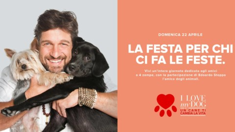 "A Molfetta I love my dog ""Un cane ti cambia la vita"" l'evento al Puglia Outlet Village"