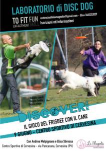 Stage di Disc Dog a Pavia - Centro Cinofilo La Magnolia