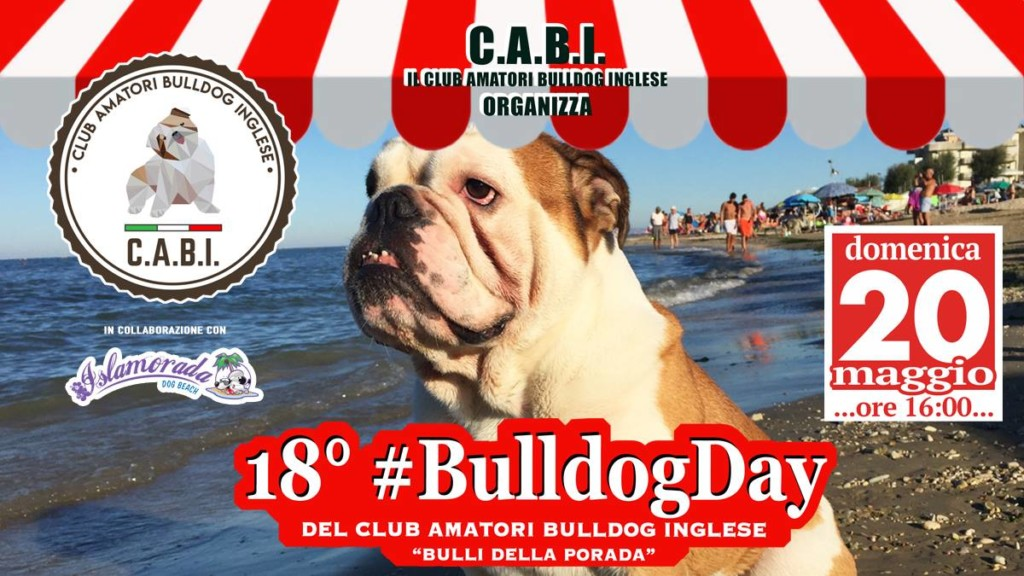 18° Bulldog Day presso Islamorada - Dog Beach