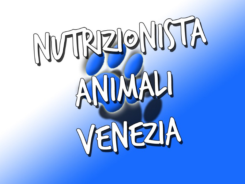 nutrizionista-animali-venezia