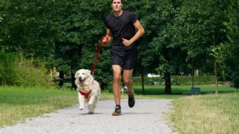 Bob Martin Dog Run a Milano la corsa non competitiva