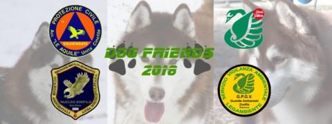Dog Friends 2018 a Imola questa domenica