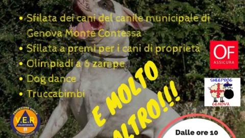 Festa del Cane il 16 settembre a Genova