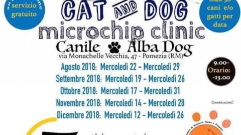 Microchip gratis per cane e gatto in provincia di Roma