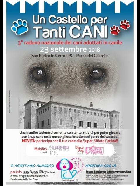Un Castello per Tanti Cani domenica prossima!