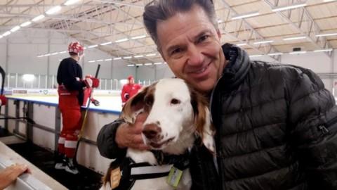 Svezia, la cagnolina Molly contro il doping