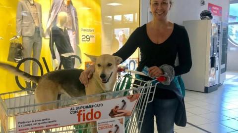 Al supermercato con Fido, l'iniziativa parte da Trento