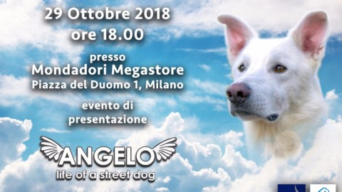 ANGELO LIFE OF A STREET DOG: la presentazione a MILANO