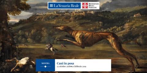 CANI IN POSA: Una mostra a Torino illustra l'antica amicizia