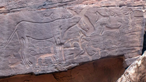 Cani e Umani, un'amicizia lunga 9.000 anni