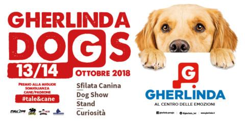 GHERLINDA DOGS: con TALE & CANE vince la coppia che si somiglia di più