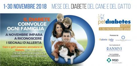 Diabete nel cane e nel gatto: sintomi e prevenzione