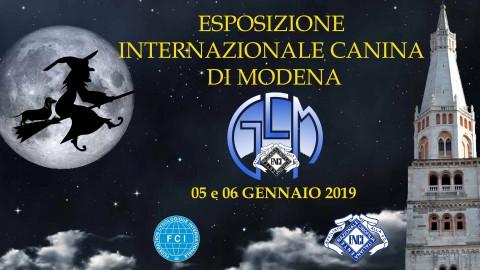 Torna a Modena l'Esposizione Internazionale Canina