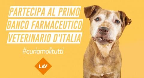 Farmaci Veterinari Inutilizzati, parte la campagna LAV