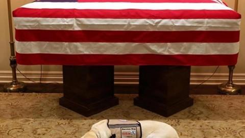 Sully Bush, l'ultimo saluto al 41° Presidente