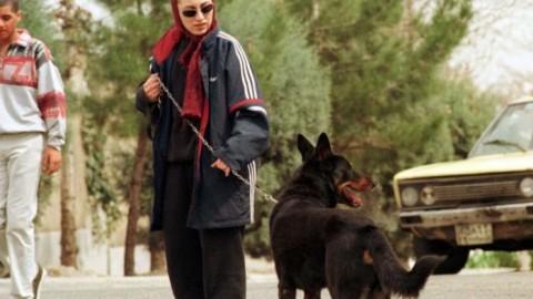 """Teheran, è guerra ai cani: generano """"paura e ansia"""""""